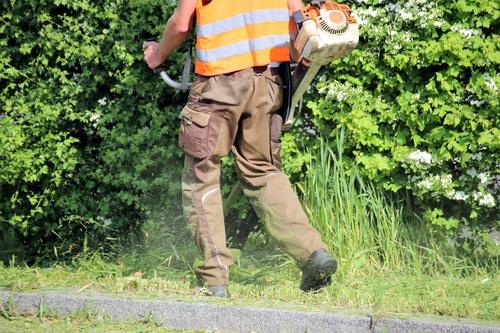 Mann mit Motorsense beim Grünschnitt
